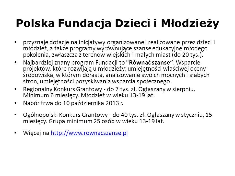 Polska Fundacja Dzieci i Młodzieży przyznaje dotacje na inicjatywy organizowane i realizowane przez dzieci i młodzież, a także programy wyrównujące sz