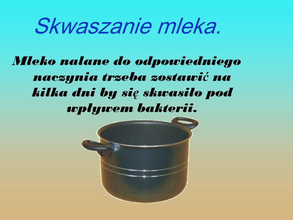 Skwaszanie mleka. Mleko nalane do odpowiedniego naczynia trzeba zostawi ć na kilka dni by si ę skwasiło pod wpływem bakterii.