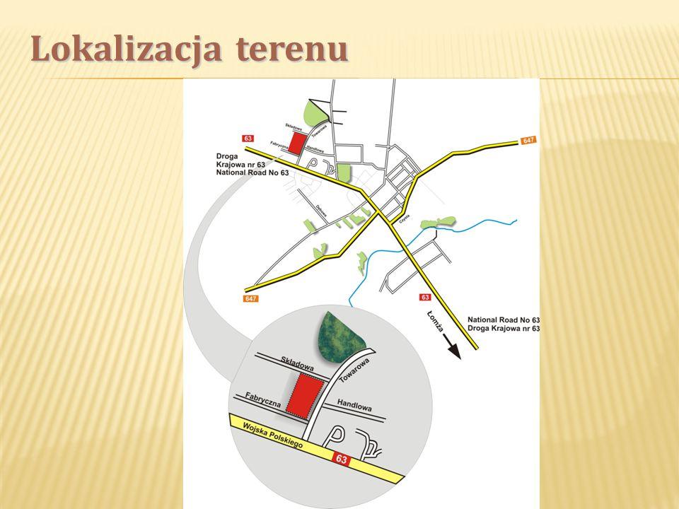 Teren przeznaczony jest do realizacji usług produkcyjnych i konsumpcyjnych.