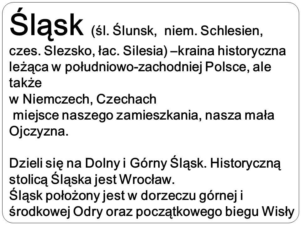 Śląsk (śl. Ślunsk, niem. Schlesien, czes. Slezsko, łac. Silesia) –kraina historyczna leżąca w południowo-zachodniej Polsce, ale także w Niemczech, Cze