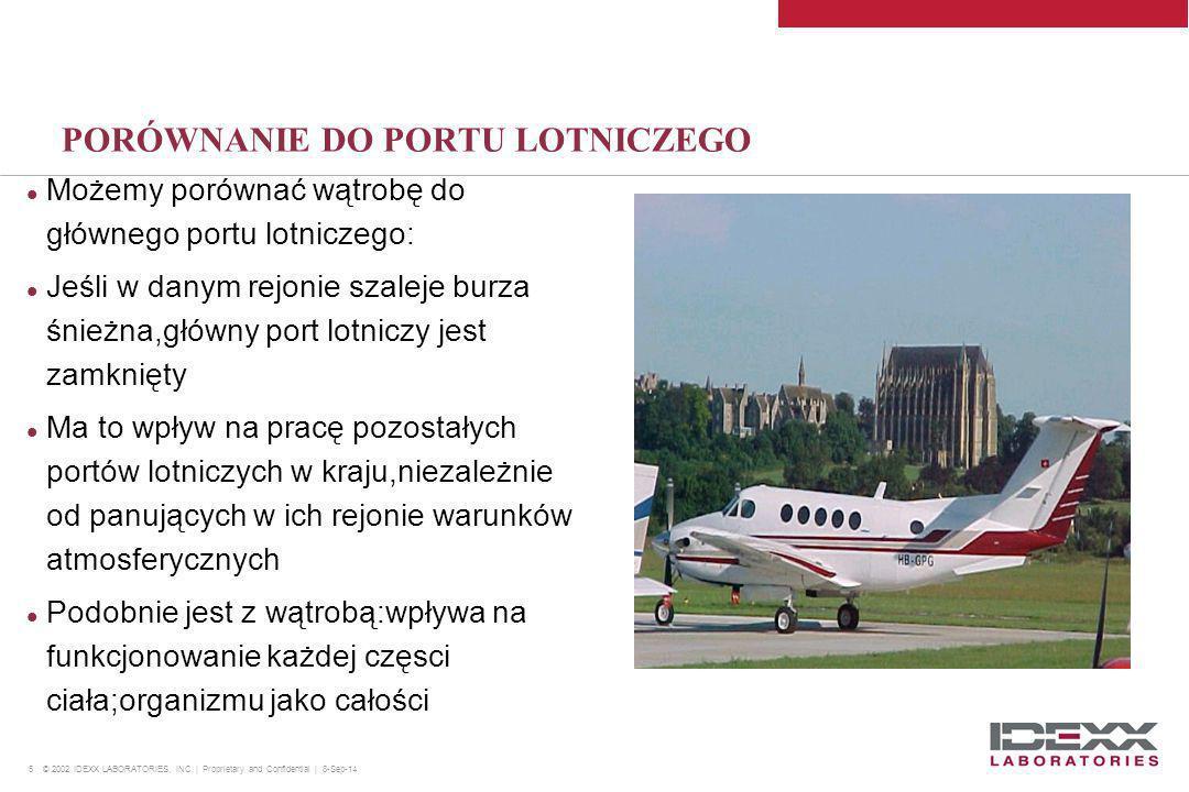 5 © 2002 IDEXX LABORATORIES, INC. | Proprietary and Confidential | 8-Sep-14 PORÓWNANIE DO PORTU LOTNICZEGO Możemy porównać wątrobę do głównego portu l