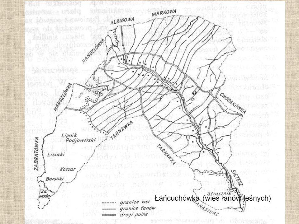 Łańcuchówka (wieś łanów leśnych)