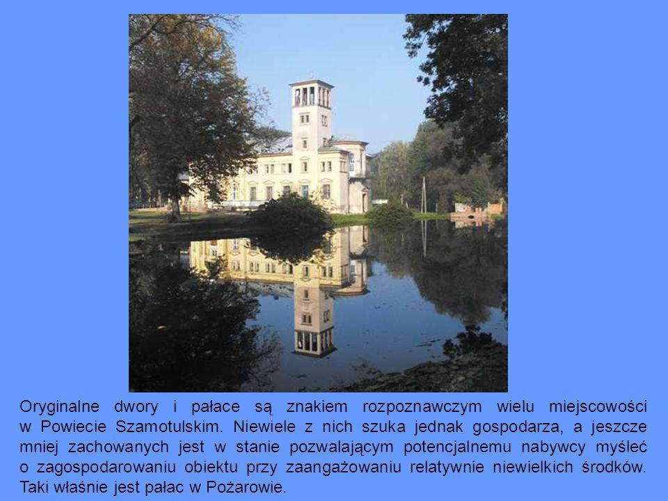 Atutem pałacu jest też położenie i brak uciążliwego sąsiedztwa.