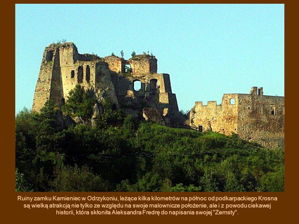 Ruiny zamku Kamieniec w Odrzykoniu, leżące kilka kilometrów na północ od podkarpackiego Krosna są wielką atrakcją nie tylko ze względu na swoje malown