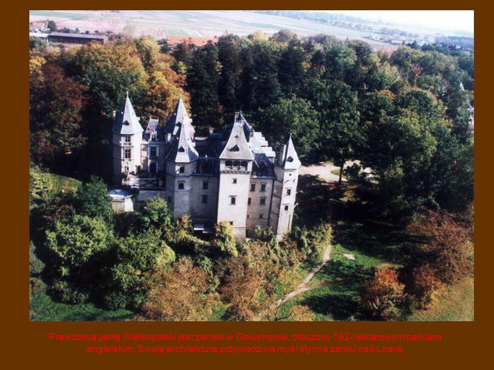 Prawdziwą perłą Wielkopolski jest zamek w Gołuchowie, otoczony 162-hektarowym parkiem angielskim. Swoją architekturą przywodzi na myśl słynne zamki na