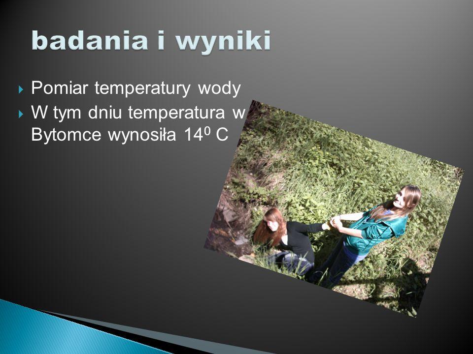  Pomiar temperatury wody  W tym dniu temperatura w Bytomce wynosiła 14 0 C