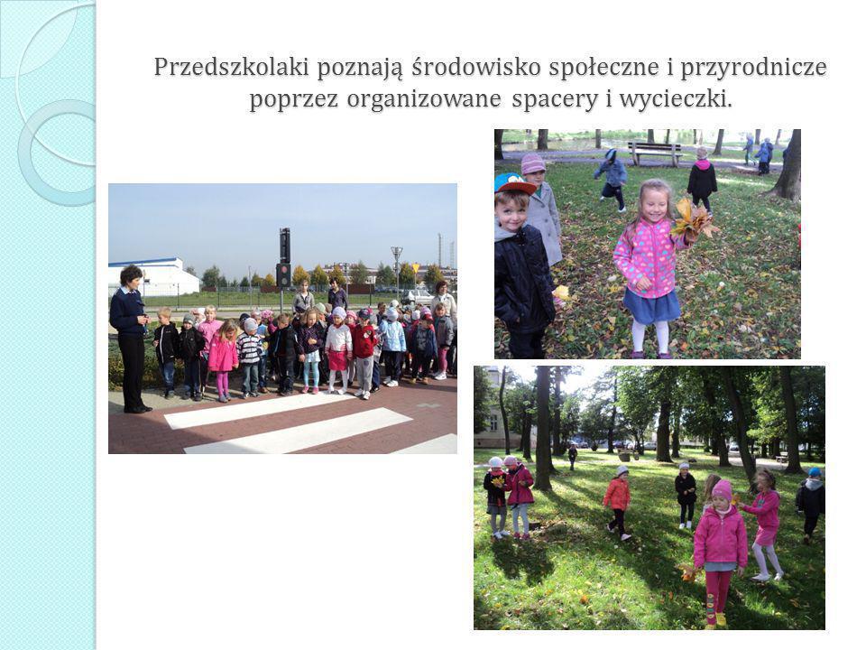Przedszkolaki poznają środowisko społeczne i przyrodnicze poprzez organizowane spacery i wycieczki.