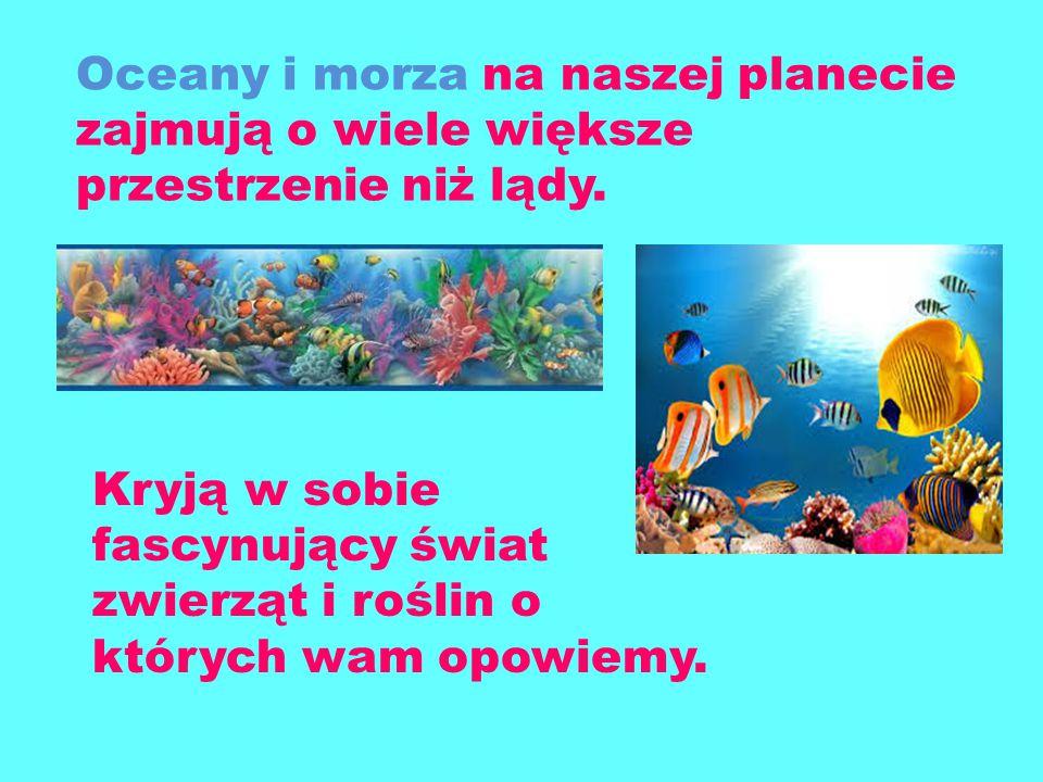 Podwodny ś wiat Wykona ł y Nikola i Natalka Smag ł o Kl. Ia i IIIb