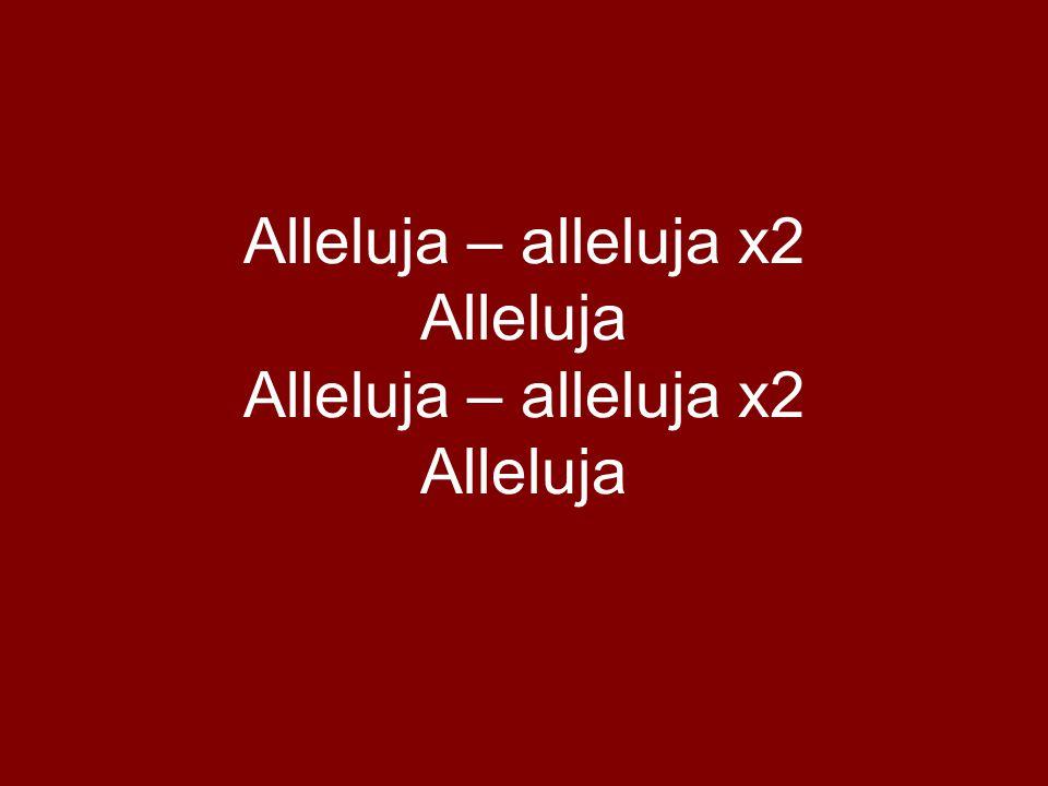 Alleluja – alleluja x2 Alleluja