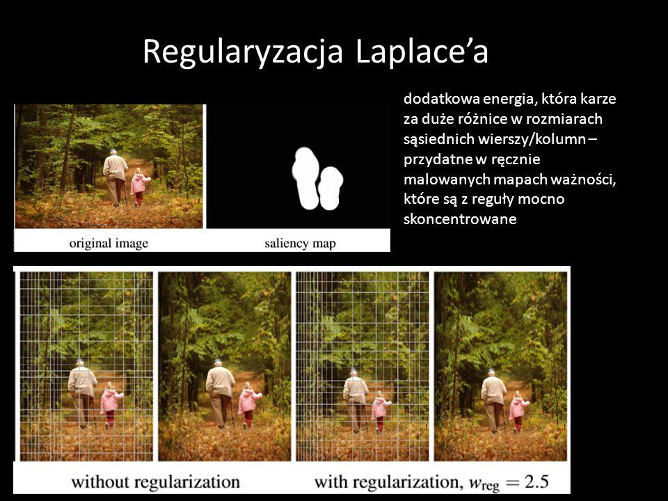 Regularyzacja Laplace'a dodatkowa energia, która karze za duże różnice w rozmiarach sąsiednich wierszy/kolumn – przydatne w ręcznie malowanych mapach ważności, które są z reguły mocno skoncentrowane