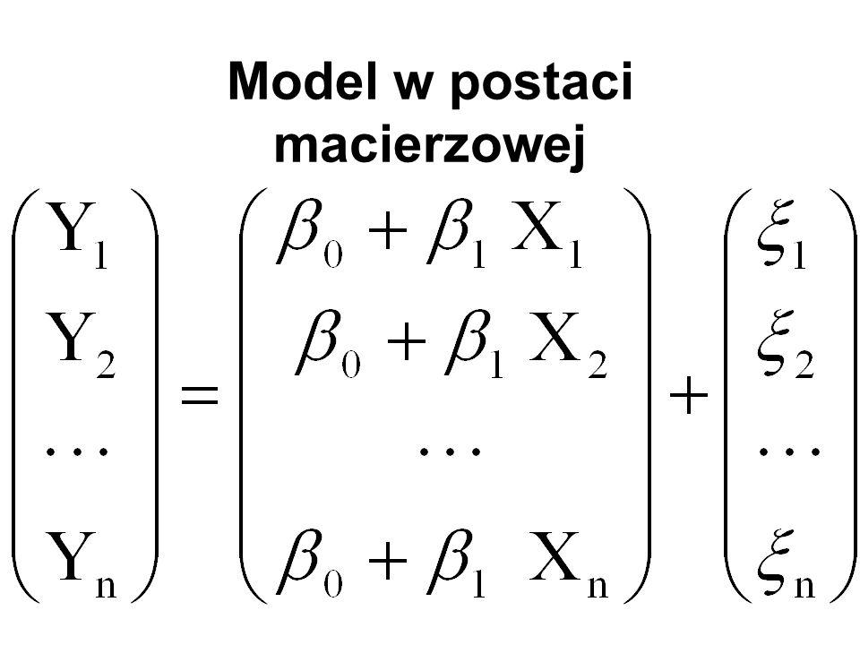 Model w postaci macierzowej