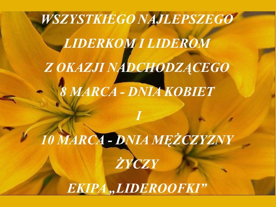 Zapraszamy wszystkich na www.lider.ae.wroc.pl, gdzie można już obejrzeć naszą nową stronę!!.