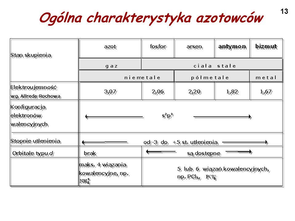 13 Ogólna charakterystyka azotowców