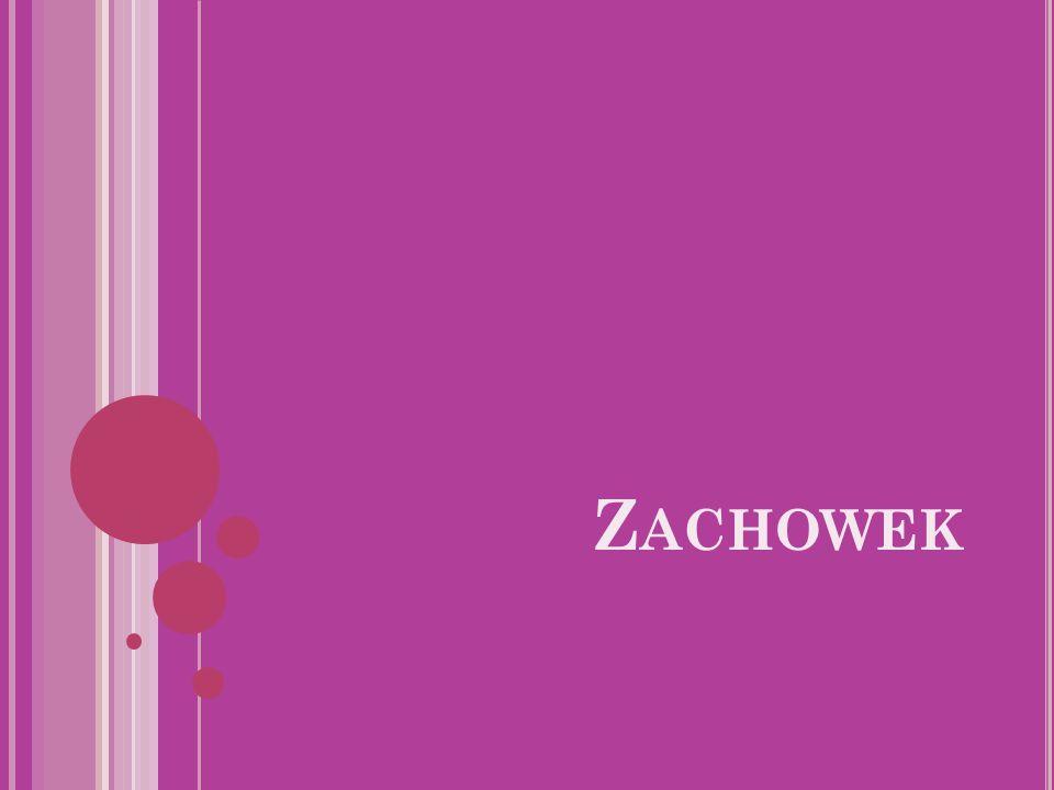 Z ACHOWEK