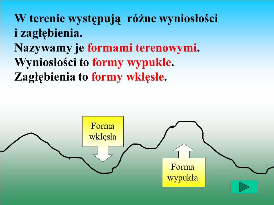 W terenie występują różne wyniosłości i zagłębienia. Nazywamy je formami terenowymi. Wyniosłości to formy wypukłe. Zagłębienia to formy wklęsłe. Forma