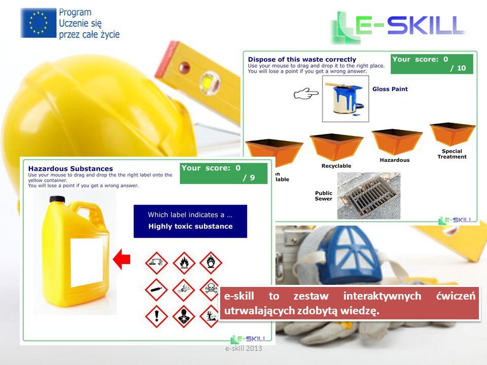 e-skill 2013 e-skill to zestaw interaktywnych ćwiczeń utrwalających zdobytą wiedzę.