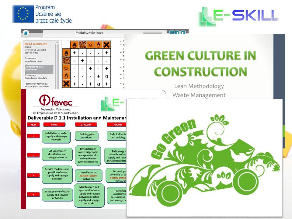 e-skill 2013