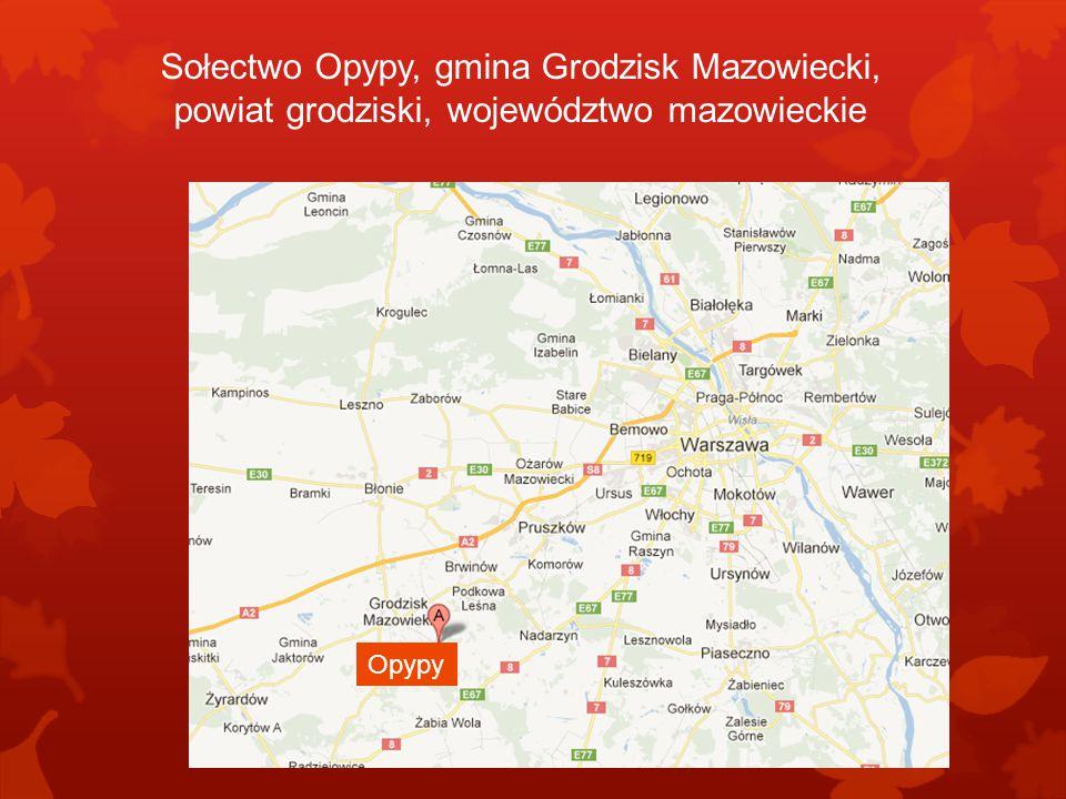 Sołectwo Opypy, gmina Grodzisk Mazowiecki, powiat grodziski, województwo mazowieckie Opypy