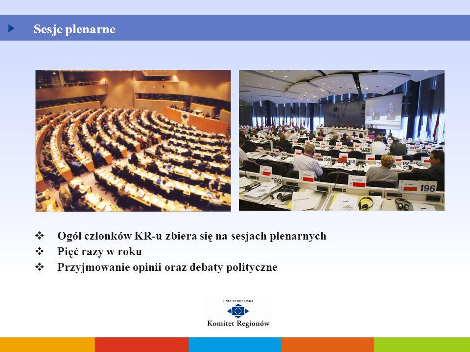  Ogół członków KR-u zbiera się na sesjach plenarnych  Pięć razy w roku  Przyjmowanie opinii oraz debaty polityczne Sesje plenarne