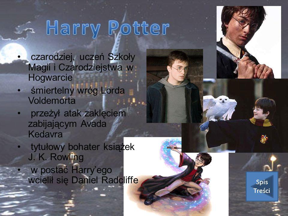 czarodziej, uczeń Szkoły Magii i Czarodziejstwa w Hogwarcie śmiertelny wróg Lorda Voldemorta przeżył atak zaklęciem zabijającym Avada Kedavra tytułowy