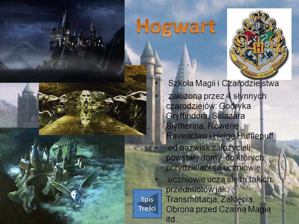 Szkoła Magii i Czarodziejstwa założona przez 4 słynnych czarodziejów: Godryka Gryffindora, Salazara Slytherina, Rowenę Ravenclaw i Helgę Hufflepuff od