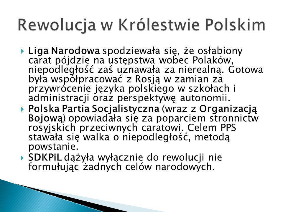  Liga Narodowa spodziewała się, że osłabiony carat pójdzie na ustępstwa wobec Polaków, niepodległość zaś uznawała za nierealną. Gotowa była współprac