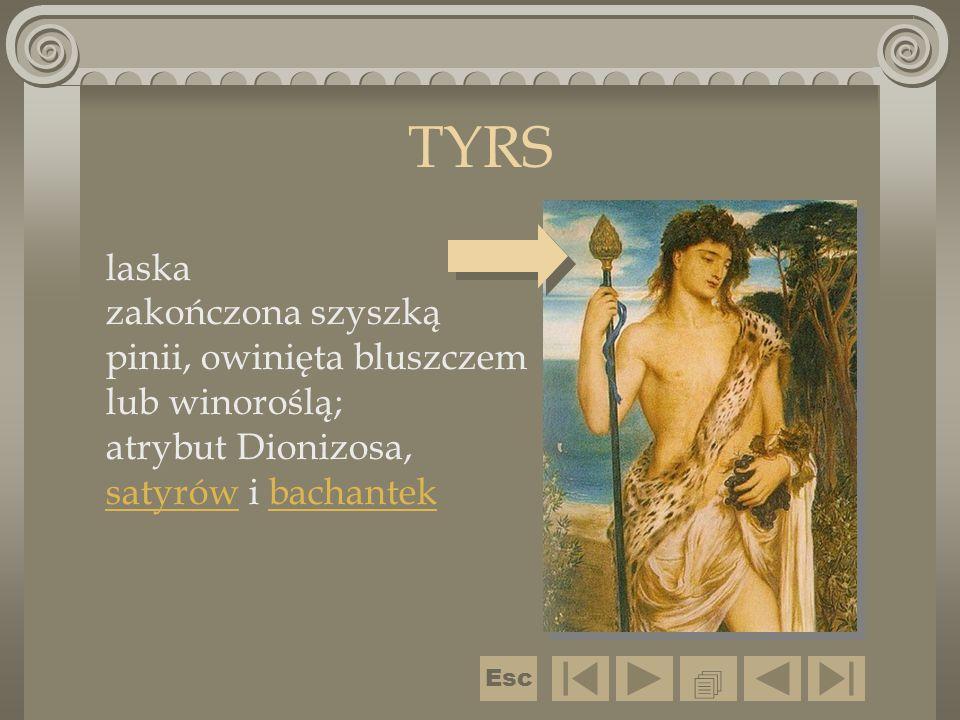 TYRS laska zakończona szyszką pinii, owinięta bluszczem lub winoroślą; atrybut Dionizosa, satyrów i bachantek satyrówbachantek  Esc