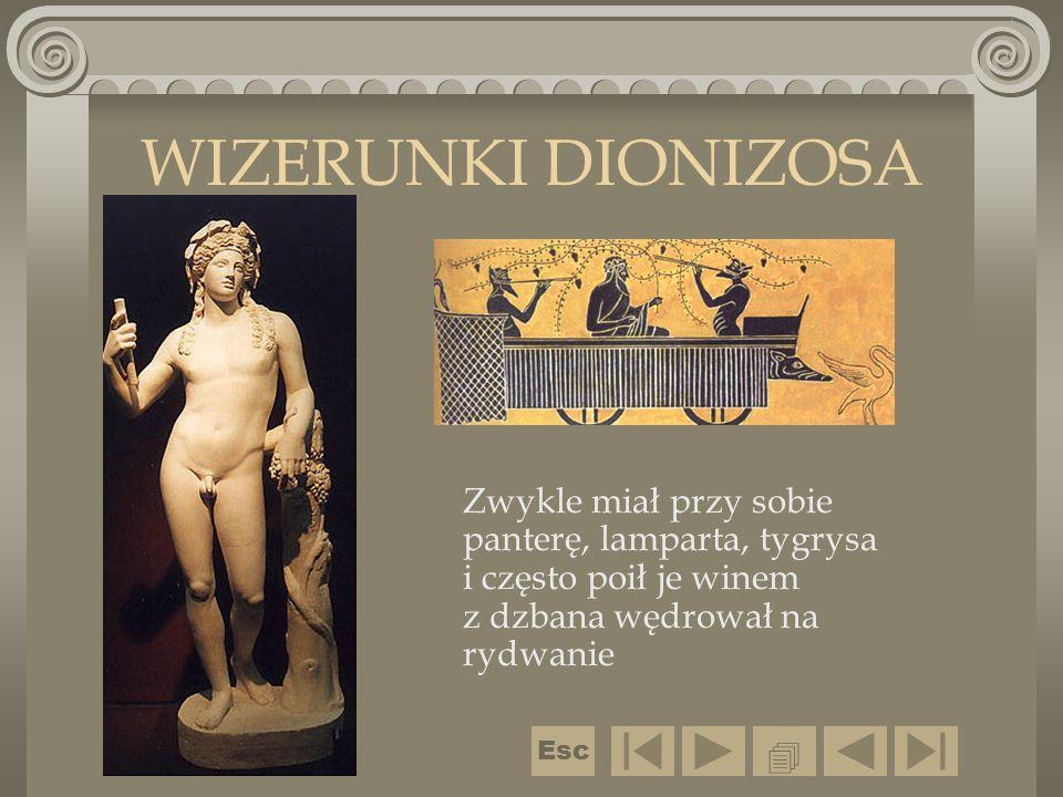 Zwykle miał przy sobie panterę, lamparta, tygrysa i często poił je winem z dzbana wędrował na rydwanie WIZERUNKI DIONIZOSA  Esc