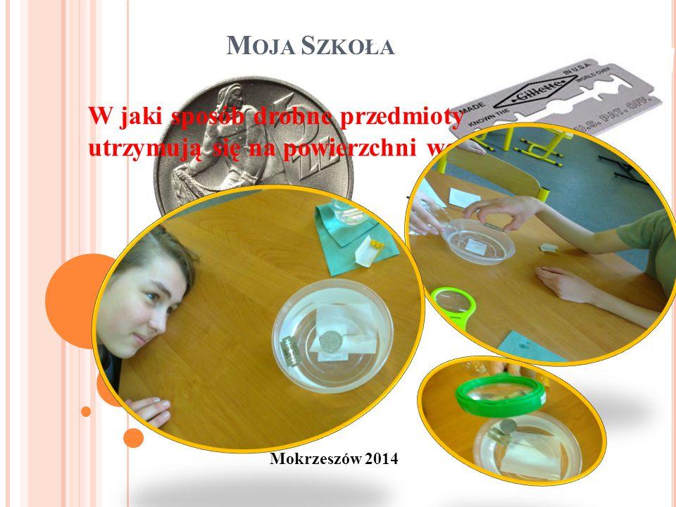 M OJA S ZKOŁA Mokrzeszów 2014 W jaki sposób drobne przedmioty utrzymują się na powierzchni wody