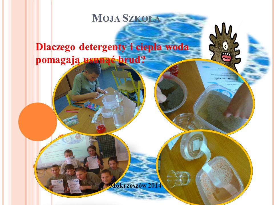 M OJA S ZKOŁA Mokrzeszów 2014 Dlaczego detergenty i ciepła woda pomagają usunąć brud