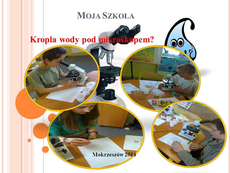 M OJA S ZKOŁA Mokrzeszów 2014 Kropla wody pod mikroskopem