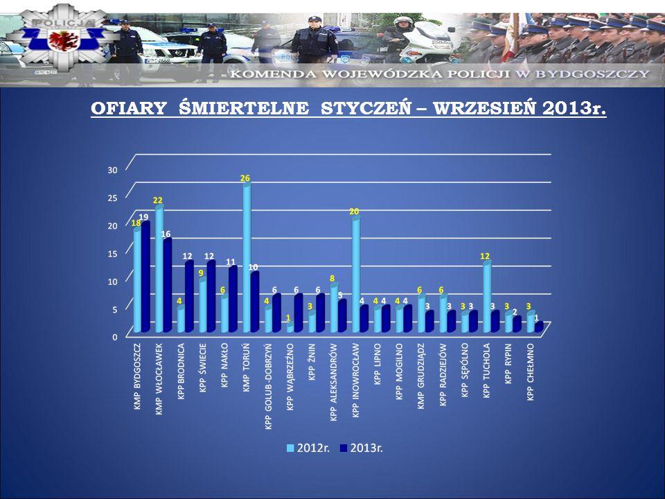 OFIARY ŚMIERTELNE STYCZEŃ – WRZESIEŃ 2013r.