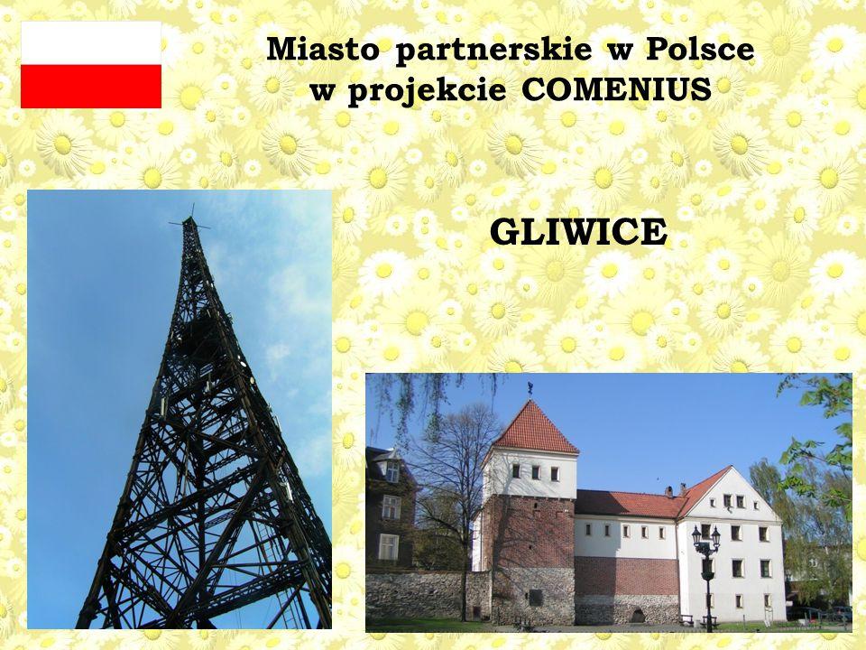Miasto partnerskie w Polsce w projekcie COMENIUS GLIWICE