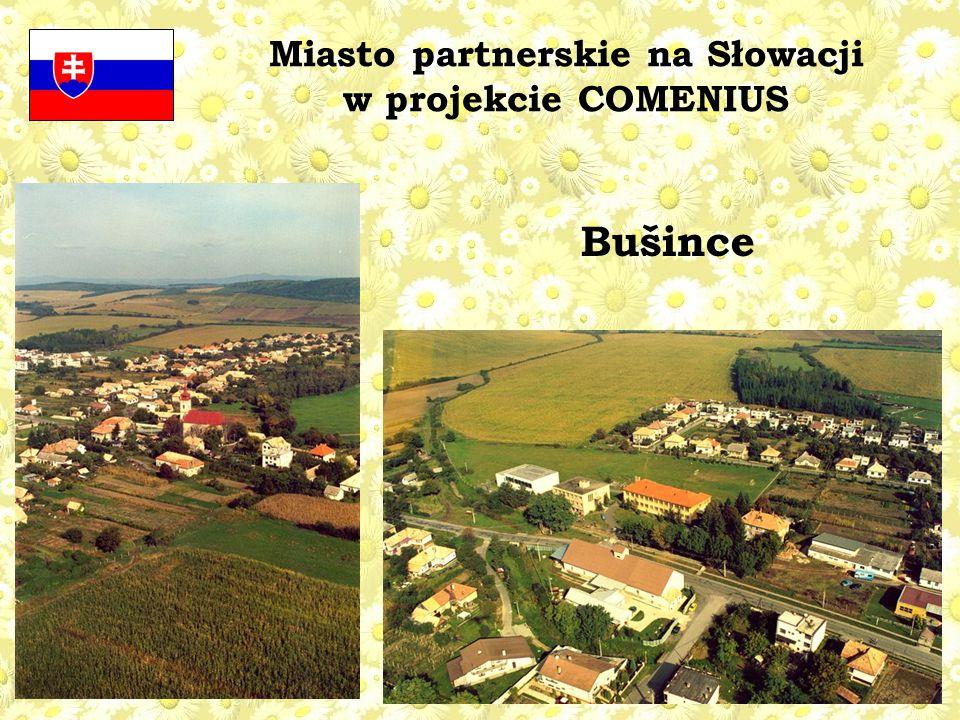 Miasto partnerskie na Słowacji w projekcie COMENIUS Bušince