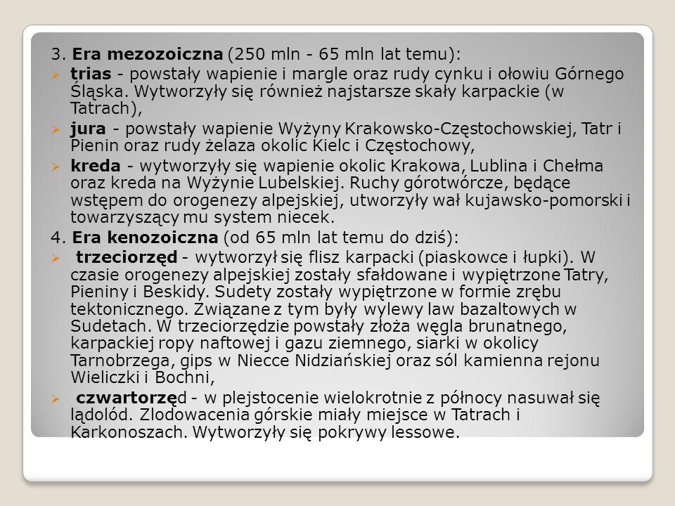 3. Era mezozoiczna (250 mln - 65 mln lat temu):  trias - powstały wapienie i margle oraz rudy cynku i ołowiu Górnego Śląska. Wytworzyły się również n