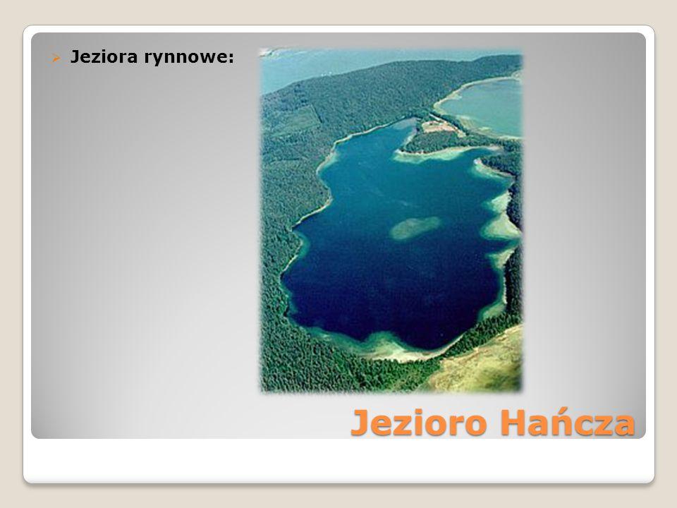 Jezioro Hańcza  Jeziora rynnowe: