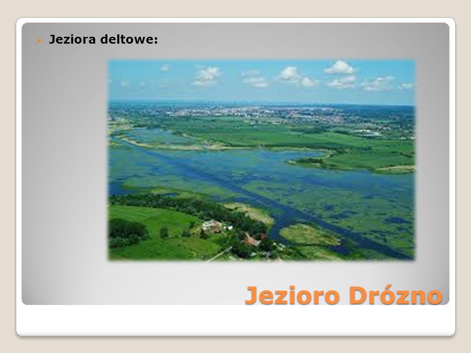 Jezioro Drózno  Jeziora deltowe: