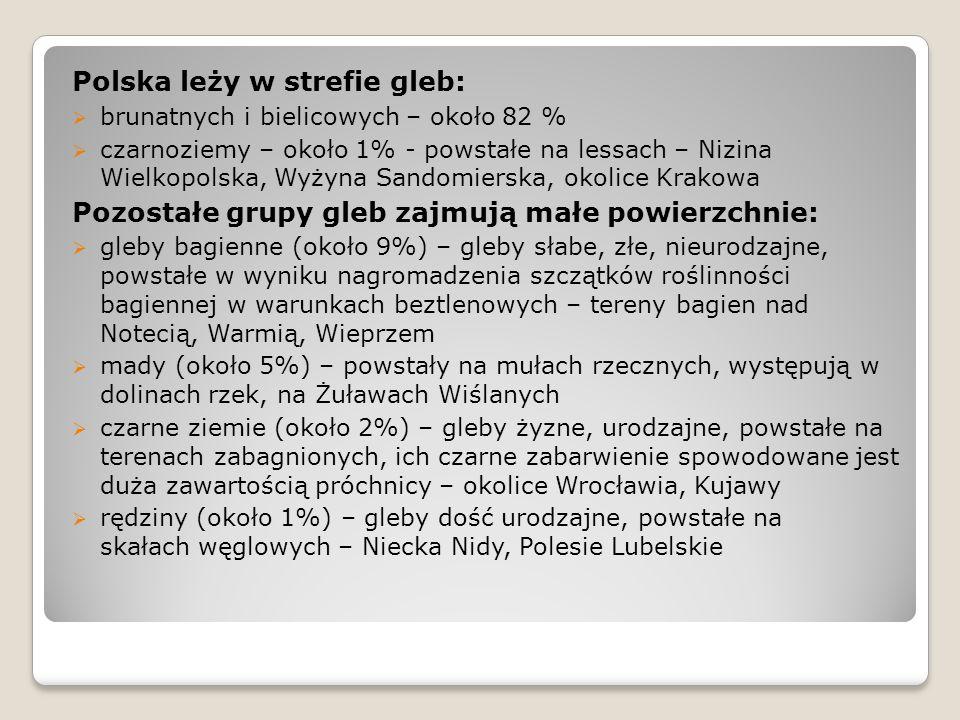 Polska leży w strefie gleb:  brunatnych i bielicowych – około 82 %  czarnoziemy – około 1% - powstałe na lessach – Nizina Wielkopolska, Wyżyna Sando