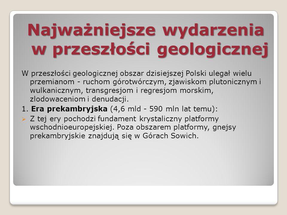 Polska leży w strefie gleb:  brunatnych i bielicowych – około 82 %  czarnoziemy – około 1% - powstałe na lessach – Nizina Wielkopolska, Wyżyna Sandomierska, okolice Krakowa Pozostałe grupy gleb zajmują małe powierzchnie:  gleby bagienne (około 9%) – gleby słabe, złe, nieurodzajne, powstałe w wyniku nagromadzenia szczątków roślinności bagiennej w warunkach beztlenowych – tereny bagien nad Notecią, Warmią, Wieprzem  mady (około 5%) – powstały na mułach rzecznych, występują w dolinach rzek, na Żuławach Wiślanych  czarne ziemie (około 2%) – gleby żyzne, urodzajne, powstałe na terenach zabagnionych, ich czarne zabarwienie spowodowane jest duża zawartością próchnicy – okolice Wrocławia, Kujawy  rędziny (około 1%) – gleby dość urodzajne, powstałe na skałach węglowych – Niecka Nidy, Polesie Lubelskie