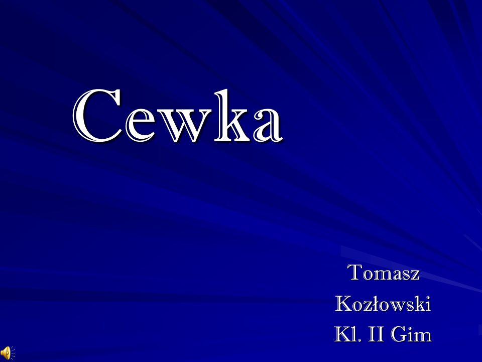 Cewka Tomasz Koz ł owski Kl. II Gim
