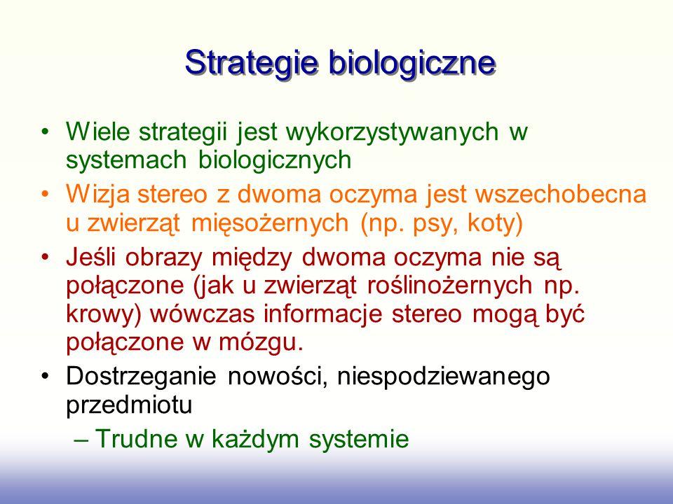 Strategie biologiczne Wiele strategii jest wykorzystywanych w systemach biologicznych Wizja stereo z dwoma oczyma jest wszechobecna u zwierząt mięsoże