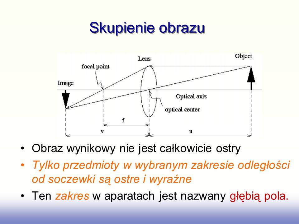 Strategie biologiczne Wiele strategii jest wykorzystywanych w systemach biologicznych Wizja stereo z dwoma oczyma jest wszechobecna u zwierząt mięsożernych (np.