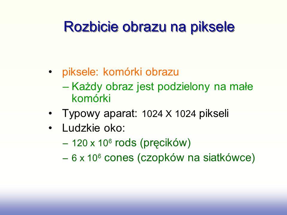 Rozbicie obrazu na piksele piksele: komórki obrazu –Każdy obraz jest podzielony na małe komórki Typowy aparat: 1024 X 1024 pikseli Ludzkie oko: –120 x 10 6 rods (pręcików) –6 x 10 6 cones (czopków na siatkówce)