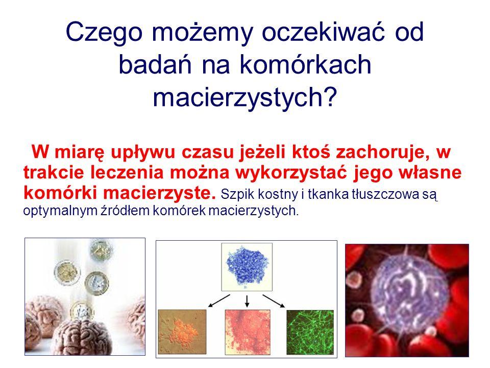 Czego możemy oczekiwać od badań na komórkach macierzystych.