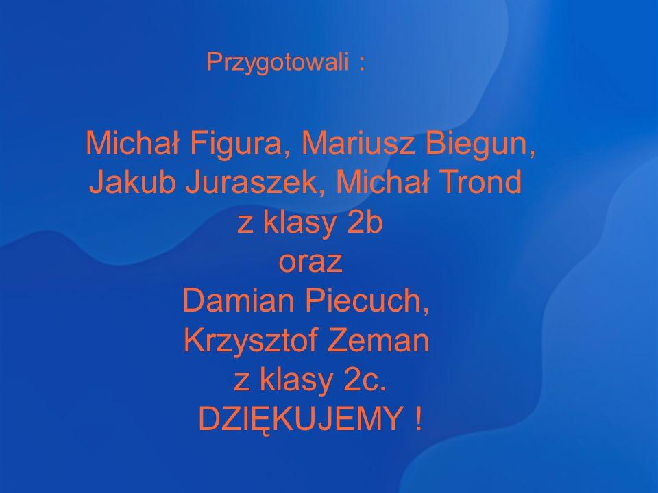 Przygotowali : Michał Figura, Mariusz Biegun, Jakub Juraszek, Michał Trond z klasy 2b oraz Damian Piecuch, Krzysztof Zeman z klasy 2c. DZIĘKUJEMY !