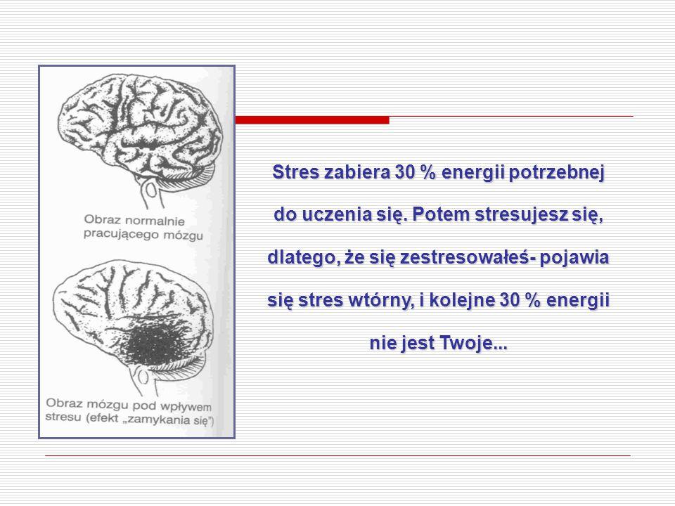 Stres zabiera 30 % energii potrzebnej do uczenia się. Potem stresujesz się, dlatego, że się zestresowałeś- pojawia się stres wtórny, i kolejne 30 % en