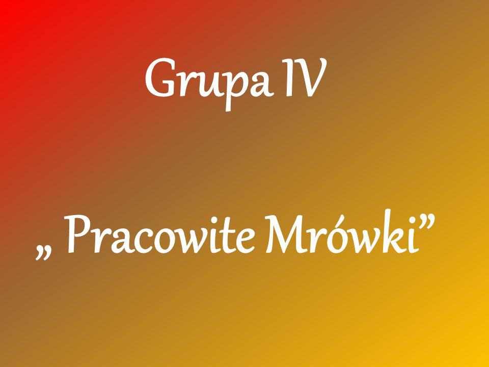 """Grupa IV """" Pracowite Mrówki"""""""