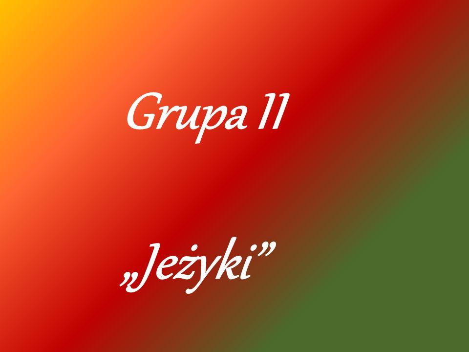"""Grupa II """"Jeżyki"""""""