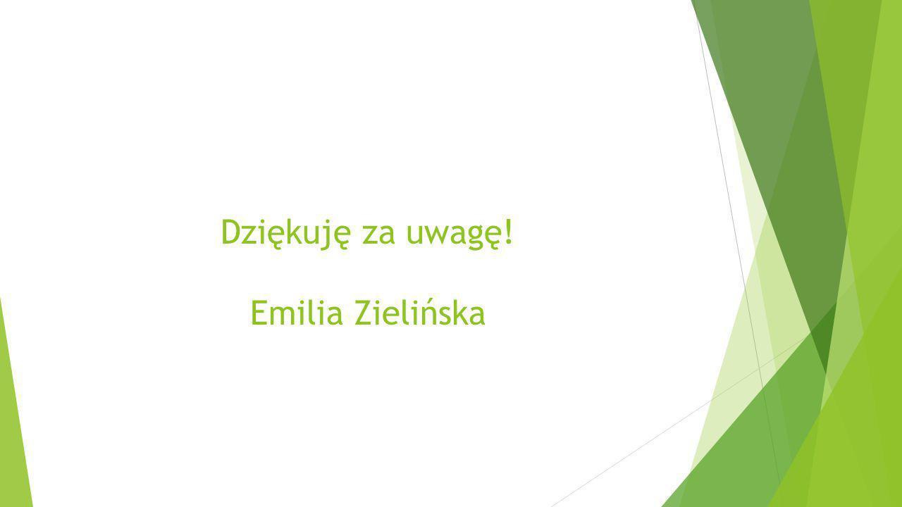 Dziękuję za uwagę! Emilia Zielińska