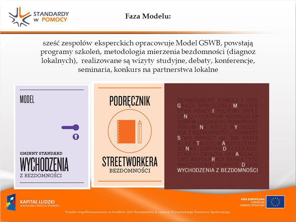 Faza Modelu: sześć zespołów eksperckich opracowuje Model GSWB, powstają programy szkoleń, metodologia mierzenia bezdomności (diagnoz lokalnych), reali